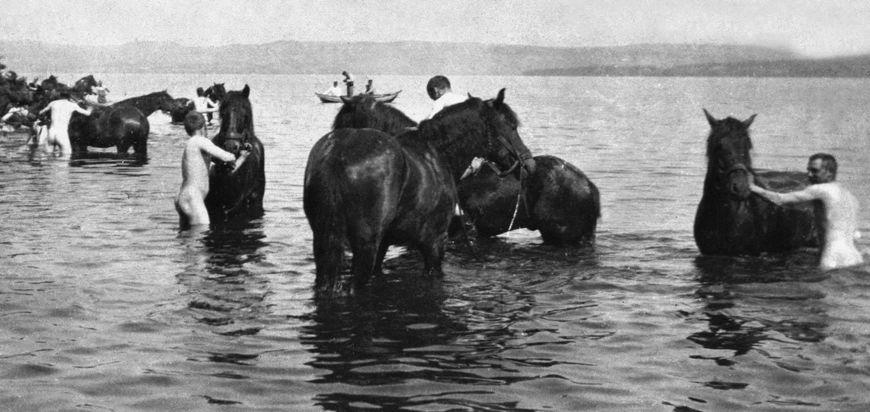 Soldater vasker hester i Mjøsa på begynnelsen av 1900-tallet.
