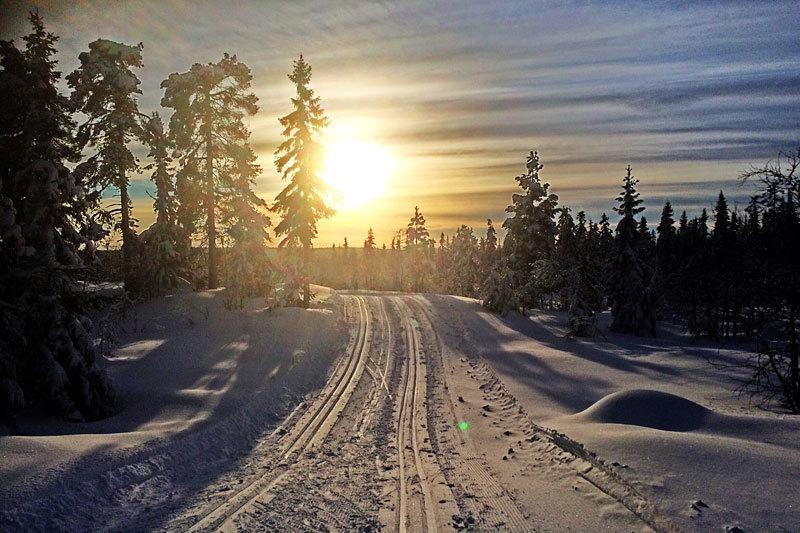 Skiløyper og innbydende natur ved Gåsbu Hyttegrend i regi av BoligPartner. Foto: Magne Lund.