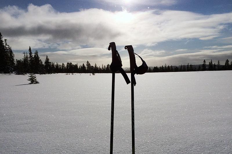 Innbydende natur ved Gåsbu Hyttegrend i regi av BoligPartner. Foto: Magne Lund.