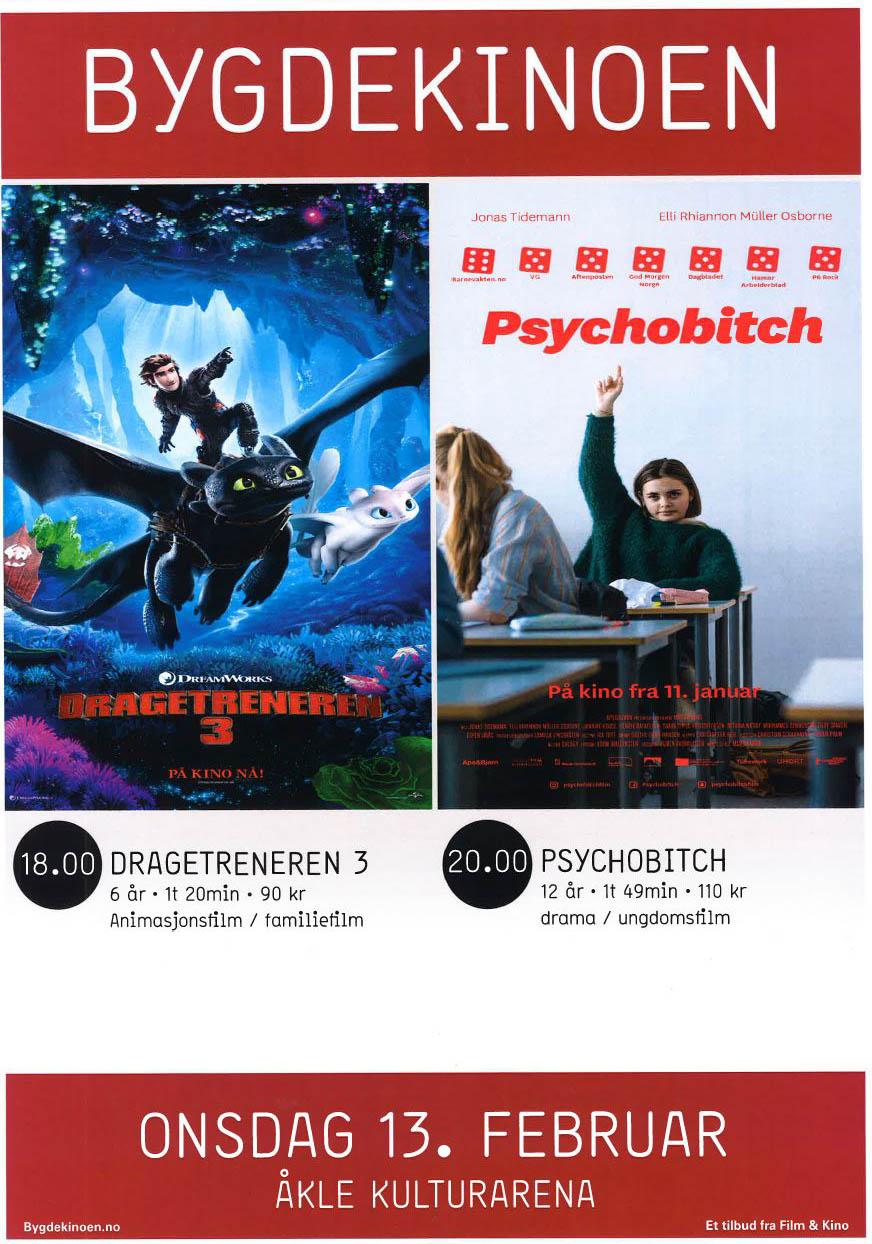 Bygdekino_13.02.19-plakat