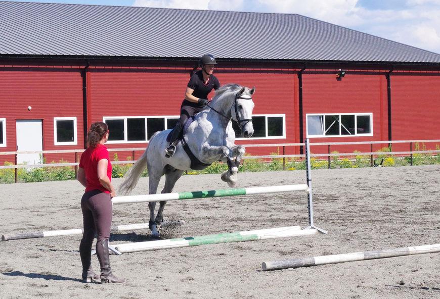 Trainee ridelærer