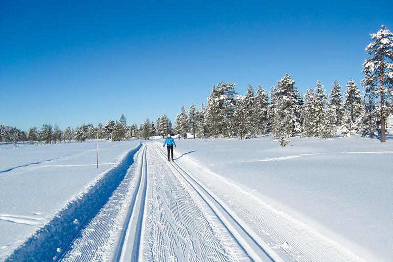 Flott terreng for langrennsløyper og skiløping ved Lygnalia Hytteområde. Foto: Privat.