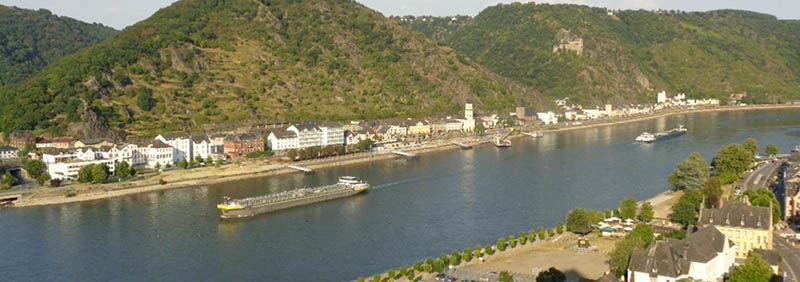 Rhinen