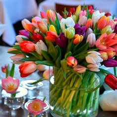 Tulipaner-i-vase-jpg