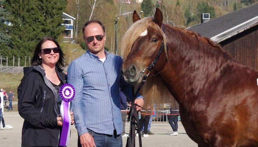 Svangstu Fardølen ble spiss i UB-klassa for dølahester og dagens hest, her sammen med oppdrettere og eiere Kurt M. Fardal og Bjørg Irene Svangstu