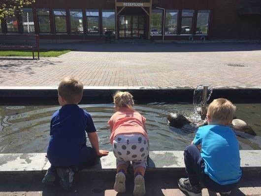 Barn som ser i en dam