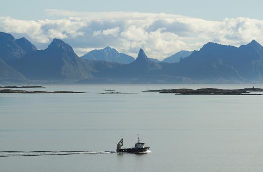 Boat in vestfjords