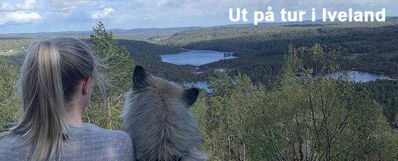 Berefjell-tekst_808x328