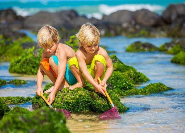 Barn leker ved vannet