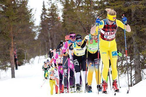 Astrid Øyre Slind fører an i feltet under Visma Ski Classics-rennet Ylläs-Levi. Foto: Christian Manzoni/NordicFocus.
