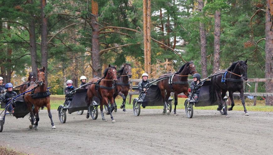 Det er flotte treningsforhold på Norsk Hestesenter.