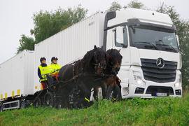 Lastebilen passerer rolig tospannet, med god margin mellom bilen og hestene. Forbikjøring av hest skal skje i maks 25 km/t og med minimum to meters avstand.