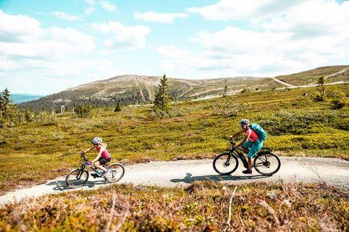 Trysil er inne i sitt femte år med utvikling av tilrettelagte sykkelstier, og har hatt en vekst i antall kommersielle gjestedøgn for sommeren på 43 prosent siden 2013. Foto: Andreas Fausko / Trysil.