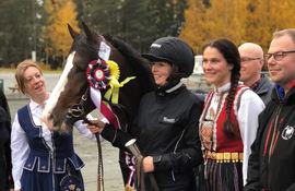 Åsajerker vant Veikle Balders hingstefinale i 2018, og ble også dagens unghest. Her under premieutdelingen. Foto: Patrick Hedqvist