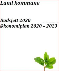 Økonomiplan 2020