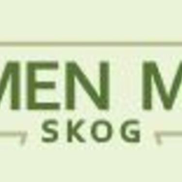 Glommen Mjøsen skog - illustrasjonsbilde leverandør nye skogplanter