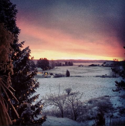 vinter-av-asbjorn-basnes
