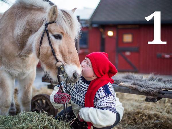 20 år gamle Viljar var første hest ut i kalenderen vår, og det var Siri Falck Orstad som fortalte om den fantastiske fjordhesten sin.