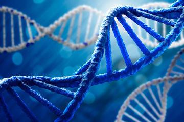 bs-DNA-molecule-117185576-360