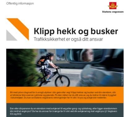 Skjermbilde av veileder fra Statens vegvesen