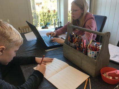 Hjemmeundervisning i Bø