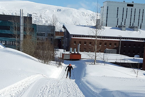 Ansatte ved Universitetssykehuset Nord-Norge (UNN) i Tromsø kan bruke ski helt frem til arbeidsstedet, med preparert løype nesten til døra. Foto: Eigill Fareth.