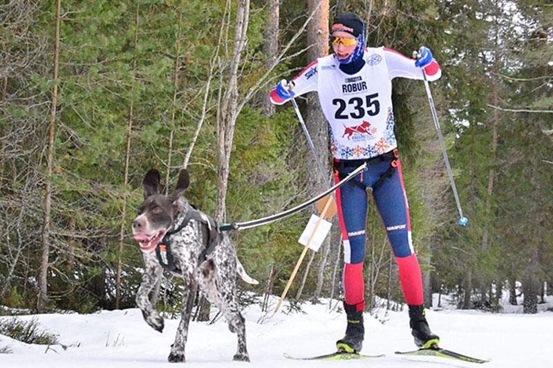 Vegard Bruem Reistad og hunden Olav. Foto: Lena Boysen.