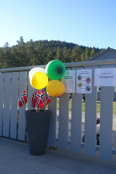 Oddeskogen - flagg og ballonger lenger fra[1].JPG