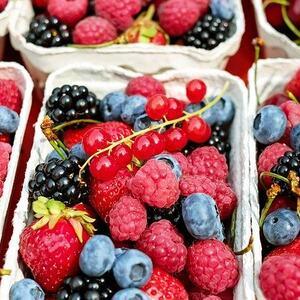 skogsbær