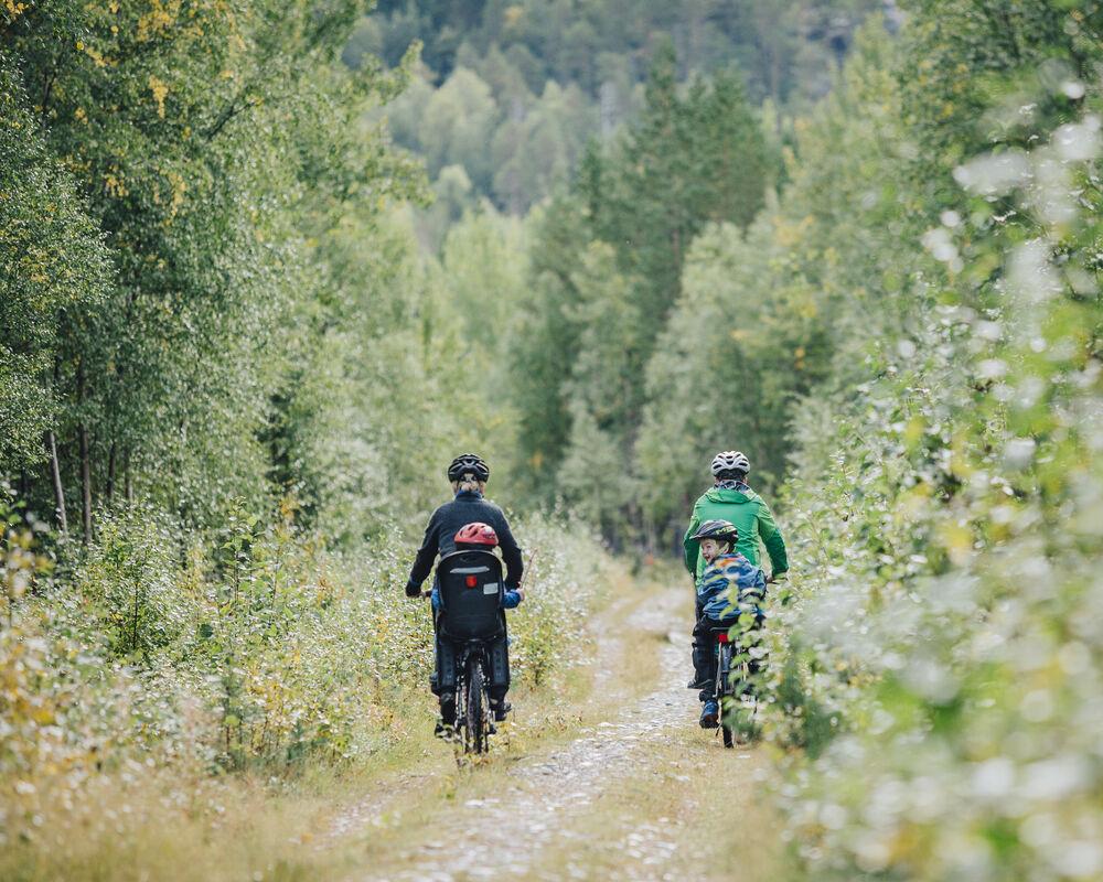 Familie på sykkeltur sykkelstien
