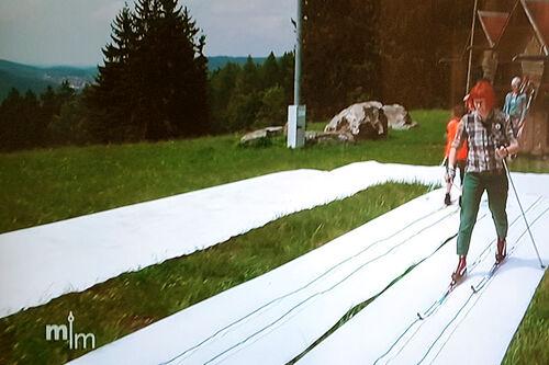 """Fra tysk fjernsyn der et program viste tidligere skiskytter (og langrennsløper) Kati Wilhelm demonstrerte et """"langrennsteppe"""" på plenen i nærheten av sin restaurant Heimatlon ikke langt fra Oberhof. Foto: Tysk TV."""