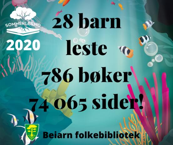 Resultat sommerles 2020