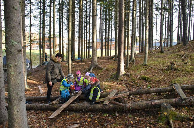 Bildet viser barnehagebarn i skogen