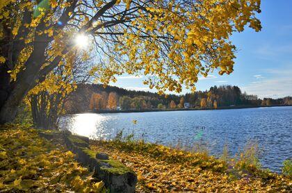 Bildet viser Randsfjorden om høsten