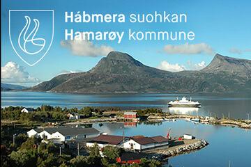 Hamaroy1-360