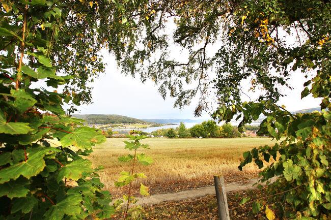 Randsfjorden 1