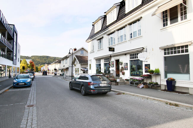 Bildet viser Storgata på Nesbakken med blomsterbutikken i front