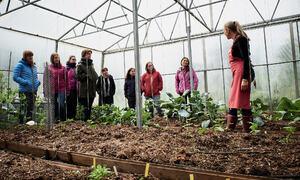 Bildet viser et kurs med flere deltakere hos Lizas småbruk