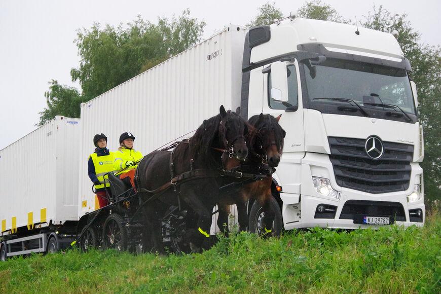 Formålet med hesteulykker.no er å samle inn data til statistikk på ulykker med hest i trafikken, forhåpentligvis kan det bidra til gode tiltak for å redusere antall ulykker.