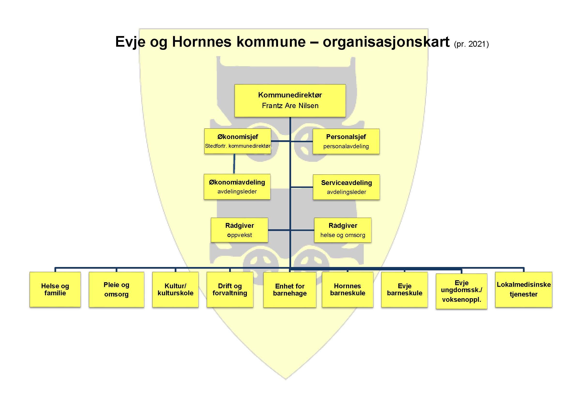Organisasjonskart 2021.jpg