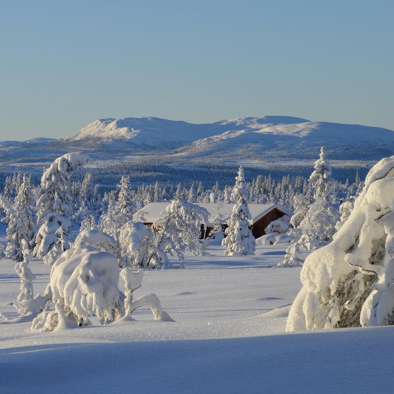 Gausdal Vestfjell
