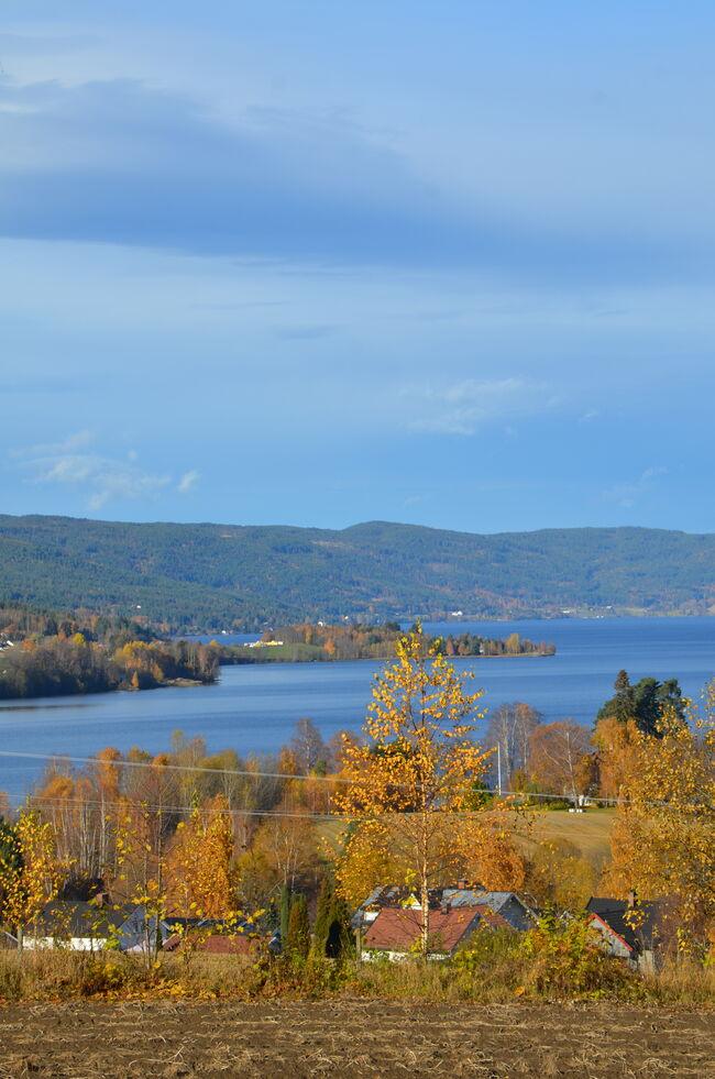Bildet viser Randsfjorden, Norges fjerde største innsjø.