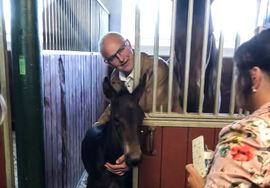Johan Hellander, ny styreleder i Stiftelsen Hästforskning, viser fram et føll på Menhammar Stuteri, hvor han har sitt daglige virke.