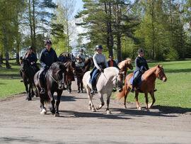 Det flotte følget ankommer Starum. I spiss rir direktør og rektor ved NHS, Cecilie Gaarder Skaug, på dølahesten Olstad Blesen, sammen med hestefaglærling Julie Myrsveen på fjordhesten Lunner Idar og hestefaglærling Mari Olsby Bratberg på nordlandshest/lyngshesten Starums Luna. Bak ser vi kløvkarene Lars Hamarsbøen og Tore Joten, flankert av folk og hester fra distriktet.