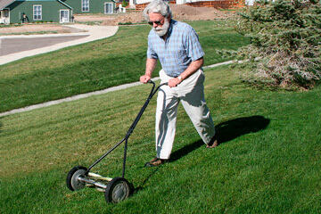 bs-Mowing-Lawn-549154-360