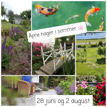 Bildecollage av forskjellige hager