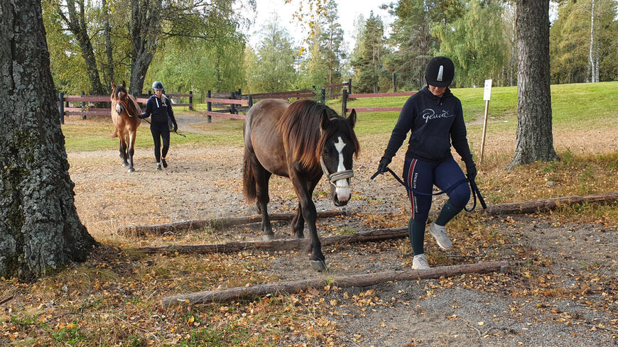 Londablesen (i front) og Håjens Arvaker under den første uka av utdanningsoppholdet.