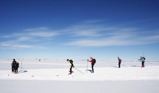 PΠvei ned fra Raufjellet og videre ned mot Kvarstadammen
