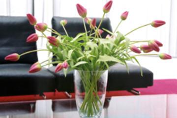 Venterom-blomst-250